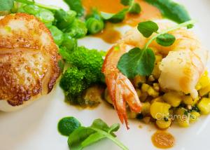 baroque-bistro-restaurant-sydney-australia-food-chamelle-photography