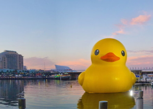 giant-duck-darlingharbour-sydney-hofman-panorama-chamellephoto