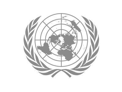 United Nations logo emblem