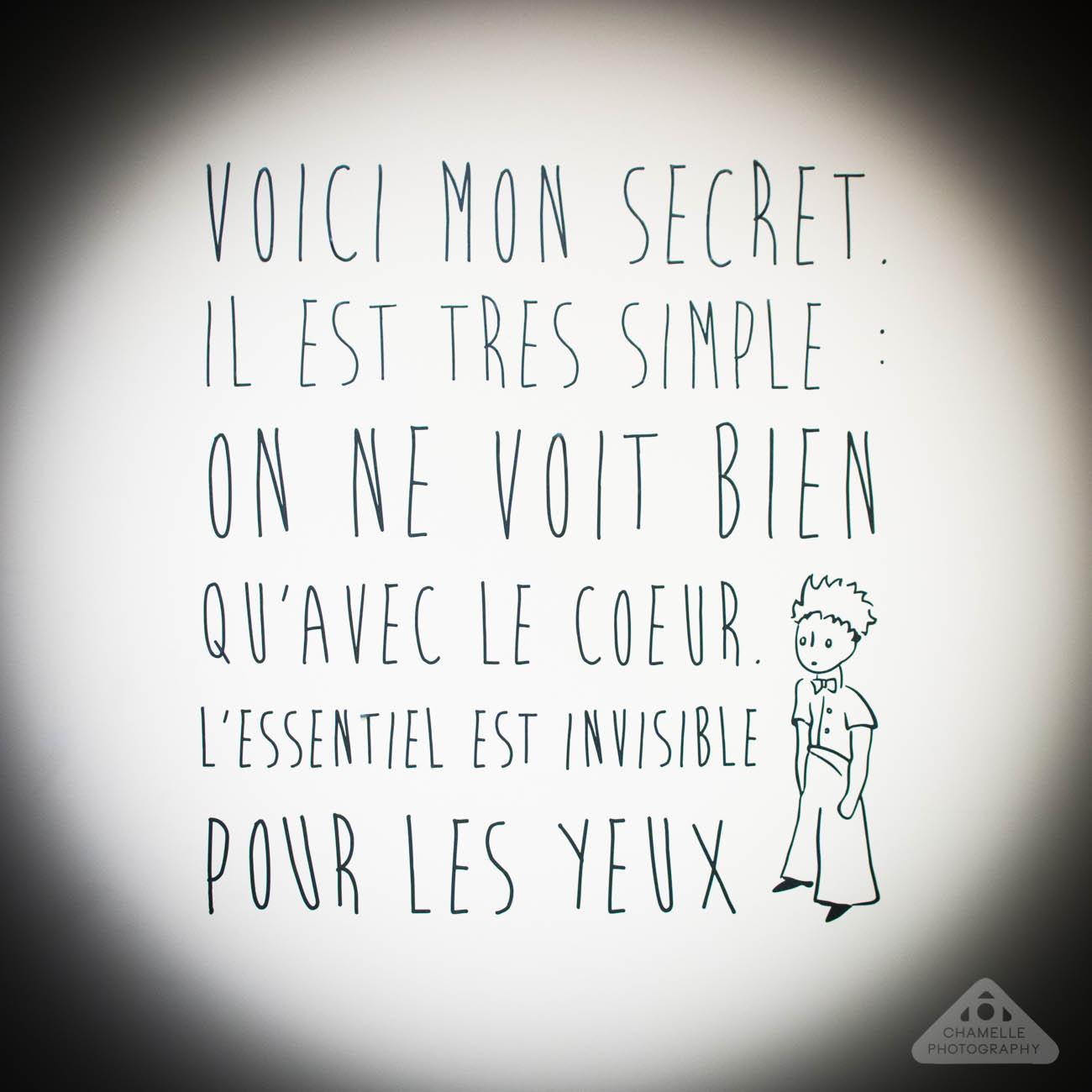 Le Petit Prince exposition Versailles Espace Richaud