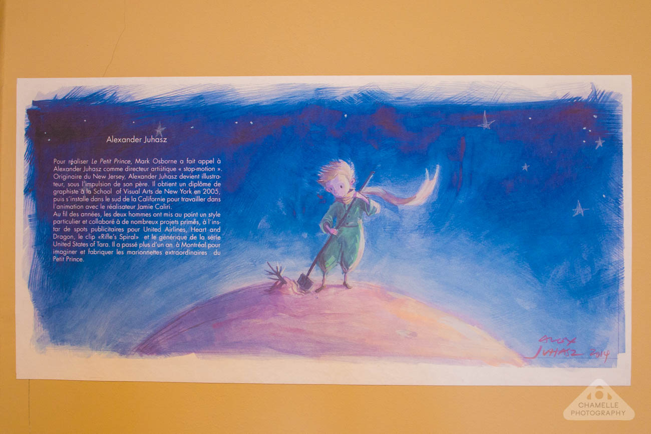 Le Petit Prince exhibition Versailles Espace Richaud