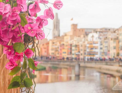 Travel: Girona Temps de Flors Flower Festival