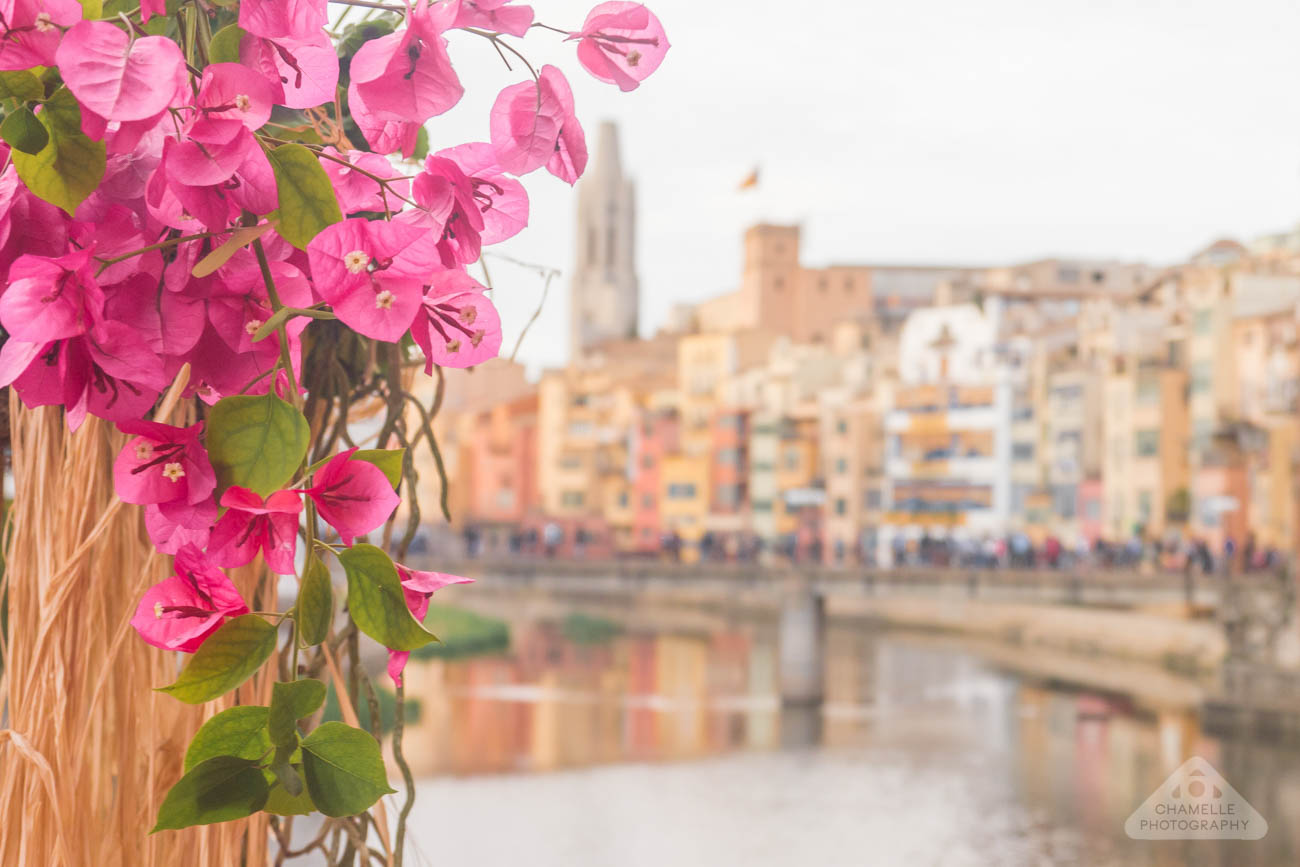Travel: Girona Temps de Flors Flower Festival