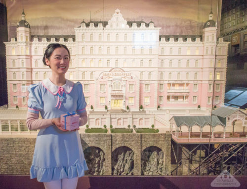 The Grand Budapest Hotel and Fantastic Mr Fox movie sets exhibition, Lyon