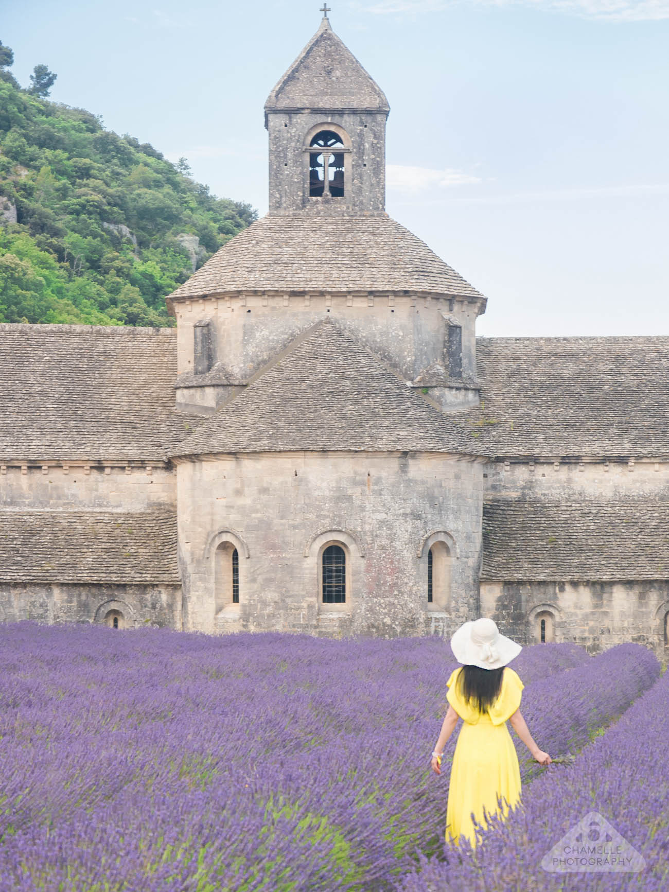 Lavender Fields France Map.Travel 10 Tips For Planning The Perfect Lavender Fields Of Provence
