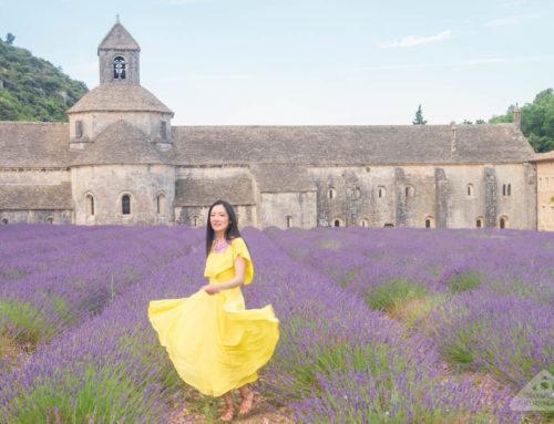 Travel: 10 tips for planning the perfect Lavender fields of Provence road trip