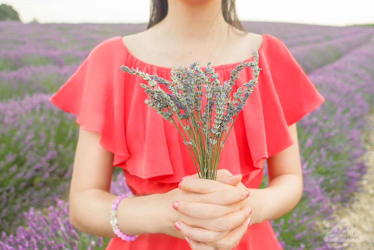 girl lavender bunch plateau de valensole provence france