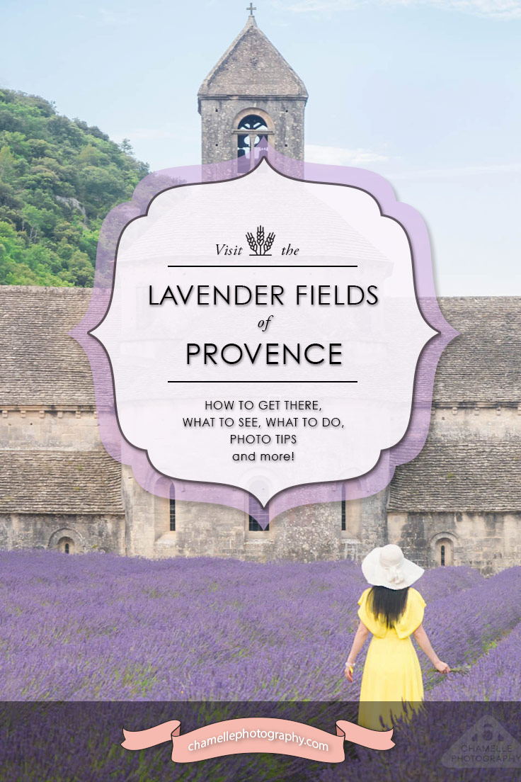 travel Visit the Lavender fields of Provence France
