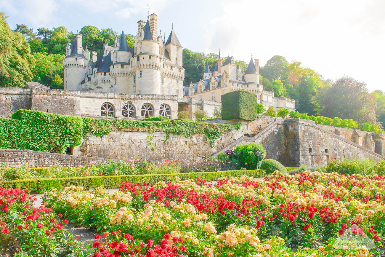 Travel 10 tips for planning the perfect loire valley for Chateaux in france to stay