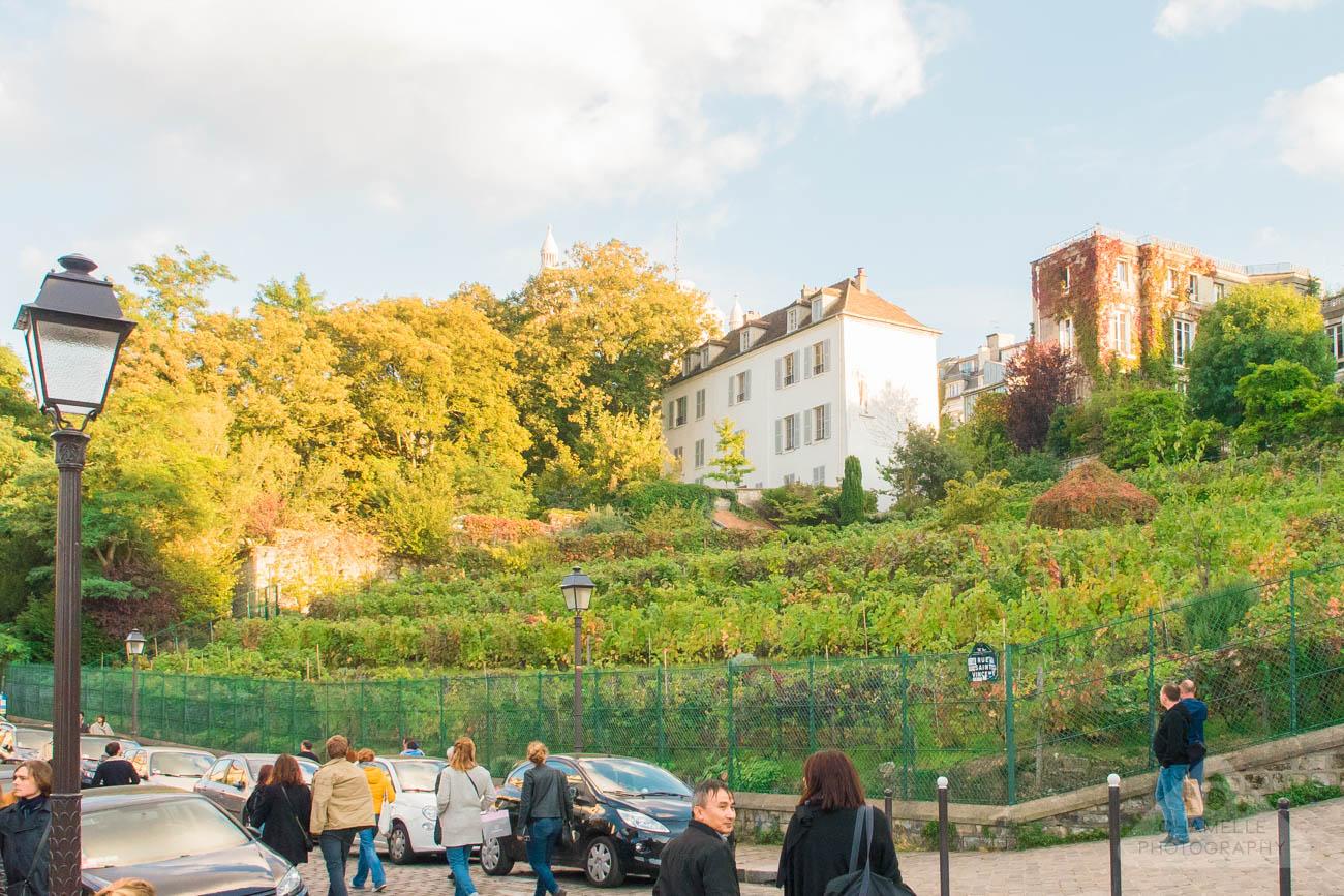 Amelie Poulain film locations Montmartre Paris France Rue Saint Vincent Clos Montmartre