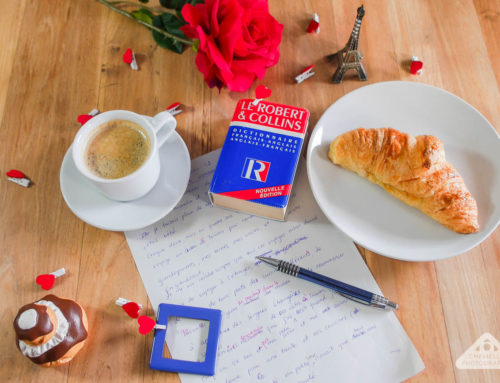 How I learnt French in just 10 months: My top 14 tips